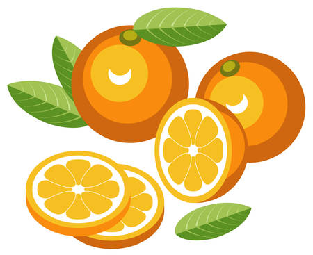 rinds: Oranges with slices Illustration