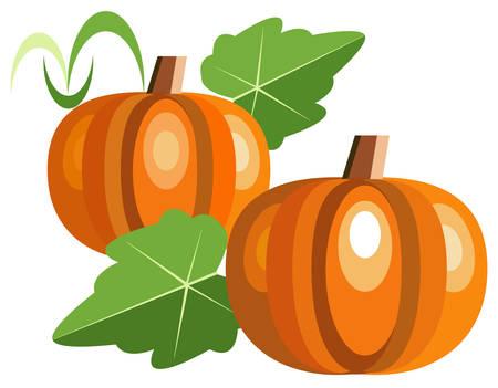 squash: Pumpkins Illustration