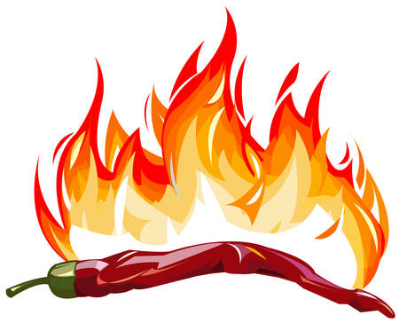 hot pepper: Red hot pepper with flames Illustration