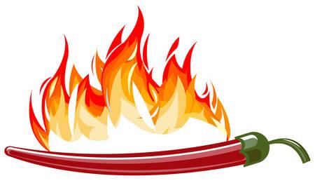 炎と赤唐辛子  イラスト・ベクター素材