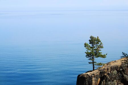 Pine on the cliff of the Baikal Stock Photo - 17083695