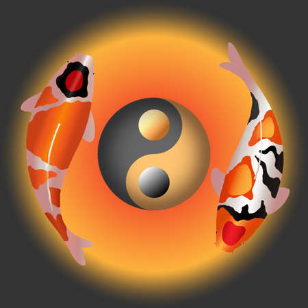 Two fancy carp with ying yang symbol Illustration
