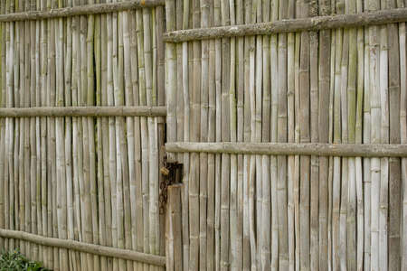 loja: old weathered bamboo gate