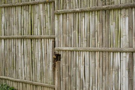 loja: resistido viejo port�n de bamb�