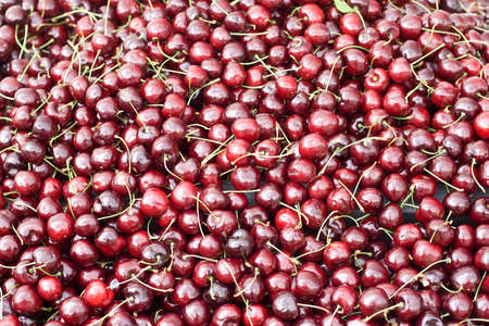 Cheriries on display and for sale at farmers market  Cherries loose for picking