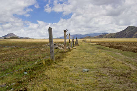 farm road in the high plans  Sierra  of Ecuador Stock Photo - 17102388