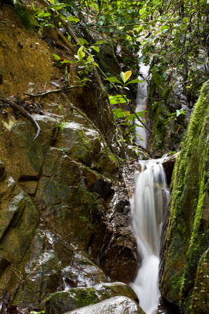 Clean Fresh Water stream flowing down mountain in green jungle through rocks. Stock Photo