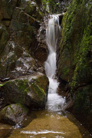 Clean Fresh Water stream flowing down mountain in green jungle through rocks. Stock fotó