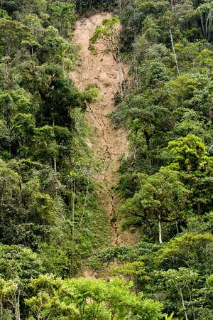 Földcsuszamlás és az erózió a dzsungel Ecuador, zöld fák barna