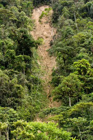 Landslide and erosion in jungle of Ecuador, green trees with brown