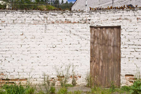 White brick wall with weathered brown door and broken glass on top Stock Photo - 17330528