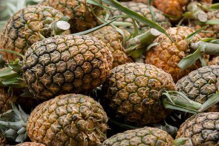 Fresh pineapples at Ecuadorian fresh fruit market selective focus Фото со стока