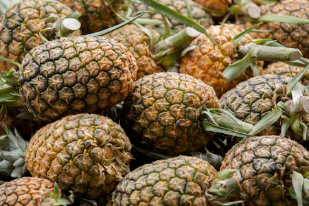 Fresh pineapples at Ecuadorian fresh fruit market selective focus Banco de Imagens