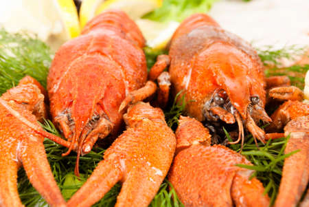 lobsters with salad Stock Photo - 12667977