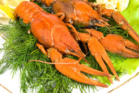 lobsters with salad Stock Photo - 13665887
