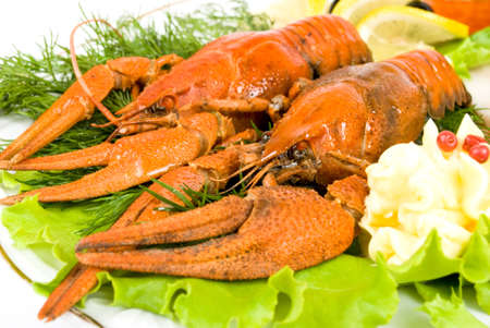 lobsters with salad Stock Photo - 13665902