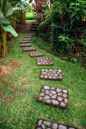 Winding stone path in the green garden Stockfoto