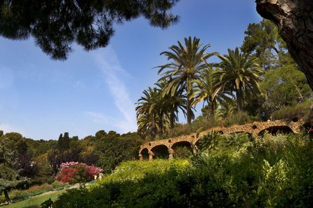A view to Guell Park with flowers and palms photo