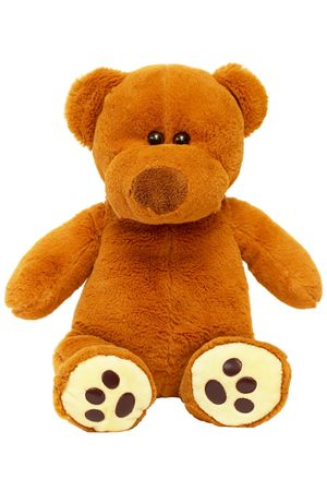 Brown sitting Teddy bear over white background macro shot photo