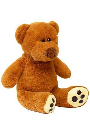 Brown sitting Teddy bear over white background macro shot