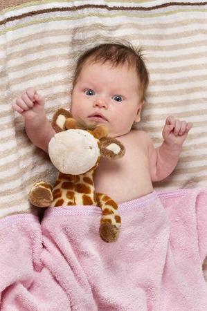 Newborn baby girl with toy giraffe over soft striped towel photo