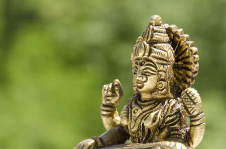close up of a Hindu deity statue out in the nature photo