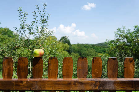brown wooden picket fence with apple on top of it and out of focus nature landscape in the background photo