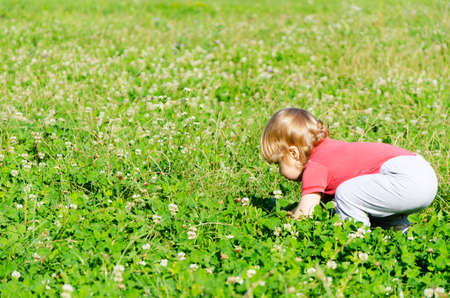 crouching: child playing in a green field crouching picking white flowers
