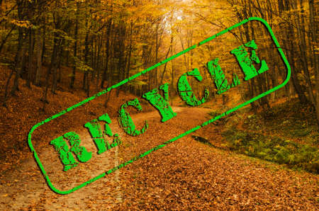 green recycle text stamp on a golden autumn forest landscape Stock Photo