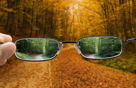 out of focus forest in Autumn with hand holding a glasses that changes vision to Spring Reklamní fotografie
