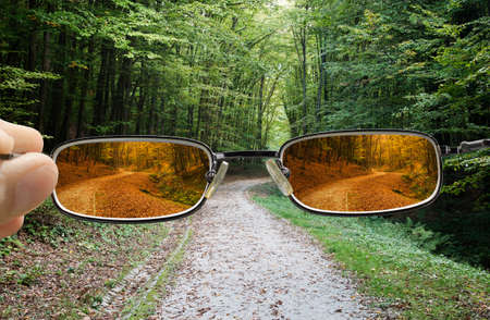 forest in Spring with hand holding a glasses that changes vision to Autumn Stock Photo