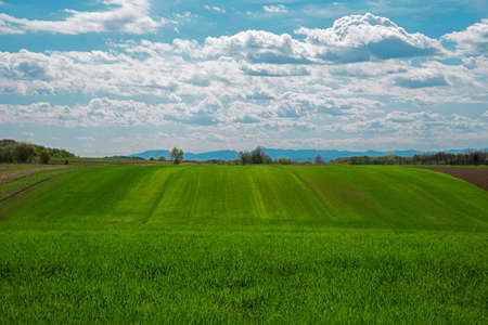 a scenic landscape view of a farmland with vibrant cloudy sky