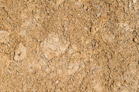 dry patch of brown earth texture background