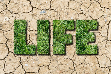 concept of a patch of green grass shaped as a word life growing out of dry patch of earth
