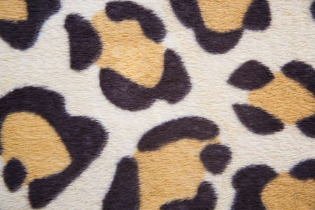 leopard patterned fabric close up background wallpaper