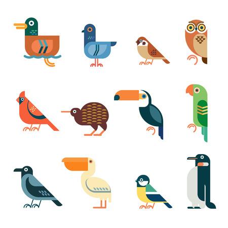 Vector bird icons. Colorful geometric birds: duck, pigeon, sparrow, owl, cardinal bird, kiwi, toucan, parrot, crow, pelican, tit, penguin. Illustration