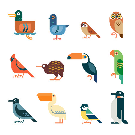 kiwi: Vector bird icons. Colorful geometric birds: duck, pigeon, sparrow, owl, cardinal bird, kiwi, toucan, parrot, crow, pelican, tit, penguin. Illustration