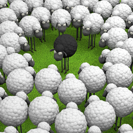 difference: One black sheep standing out from the crowd, leadership, difference concept