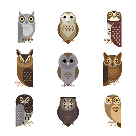 Vector owl characters set showing different species. Stock Illustratie