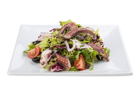Salad with squid and octopus on a white background