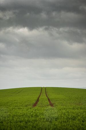 Single path of muddy tyre tracks through a lush, green field continuing over the hill beyond the horizon with dramatic, grey, storm clouds closing in above