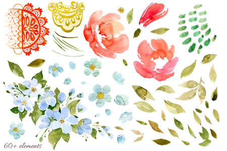 Set of floral elements rose, rosehip or peony, foliage, openwork pattern and abstract spots. Watercolor illustration Imagens