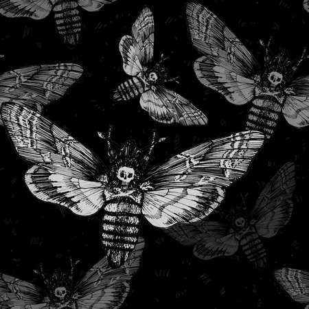 Seamless pattern. Butterfly Acherontia atropos dead head, adams head. Black and white graphics handmade. Pattern Zdjęcie Seryjne