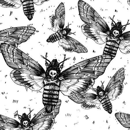 Seamless pattern. Butterfly dead head, adams head. Black and white graphics handmade. Pattern Zdjęcie Seryjne