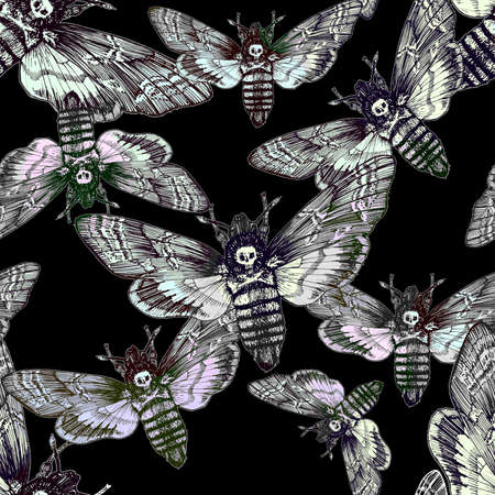 Seamless pattern. Butterfly dead head, adams head. Black and white graphics handmade.