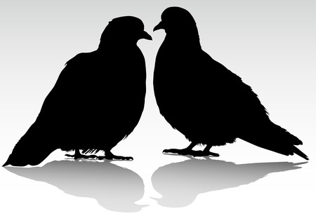 drawing of two doves, sitting next Vector