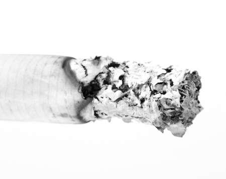 pernicious: Color photo of filter cigarettes ash on white