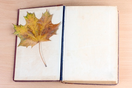 Photo of book and maple leaf photo