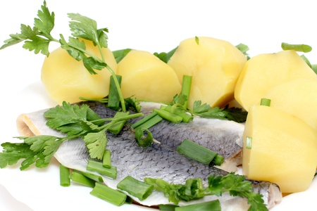color photographs: Color photographs of salt herring and potatoes on a plate