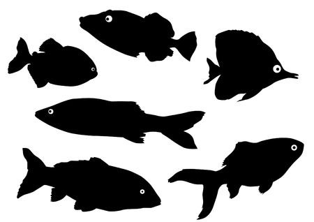 Vector drawing silhouettes of tropical fish Vector